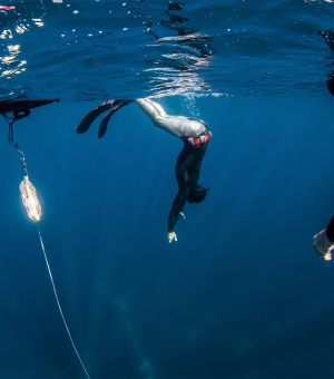 Freediving Training applied to Spearfishing